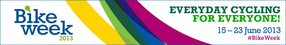 2013 web banner